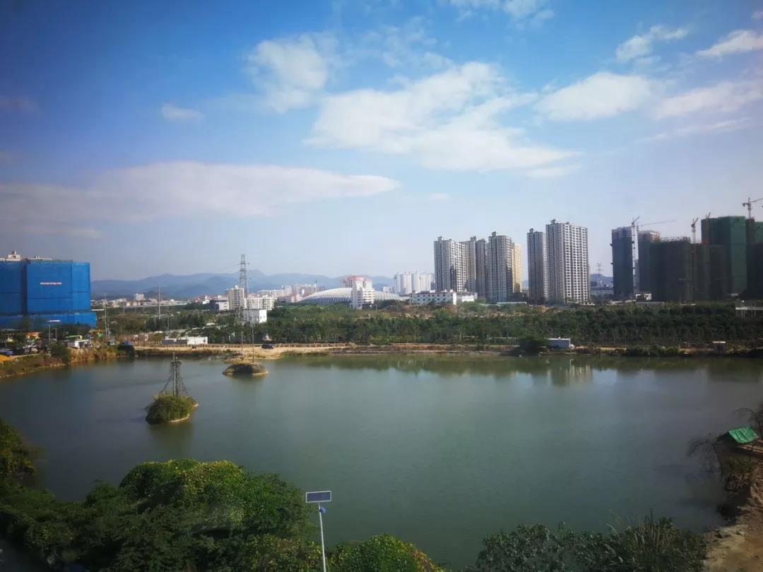 公园湖畔实景图