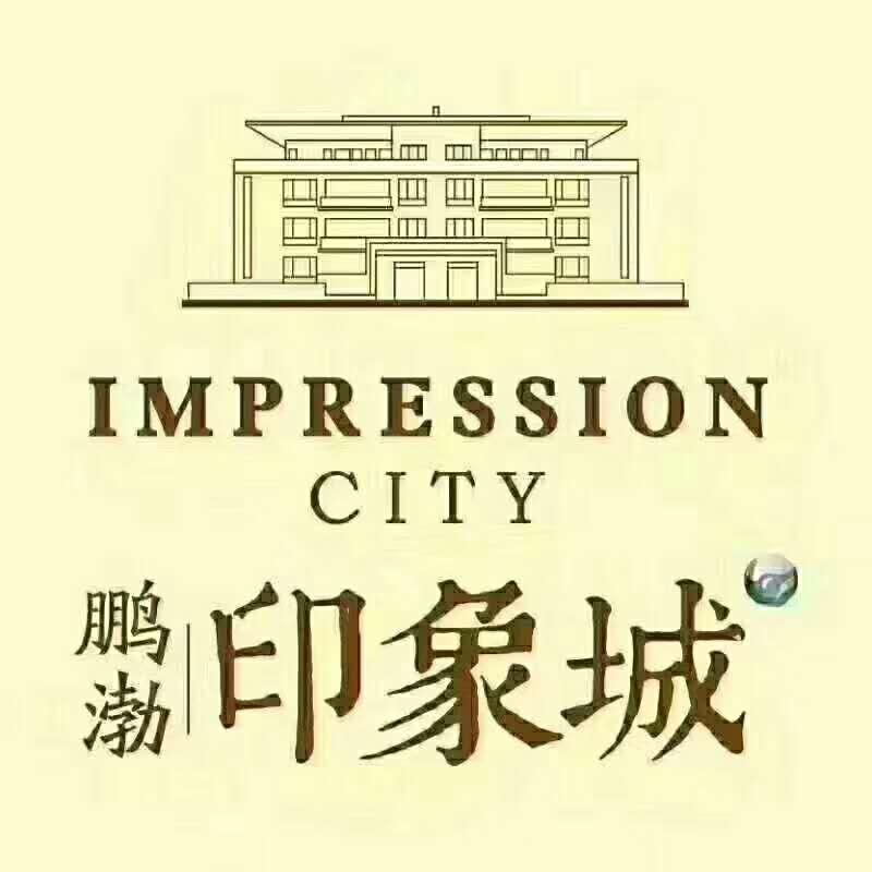 涿州印象城开发商简介: