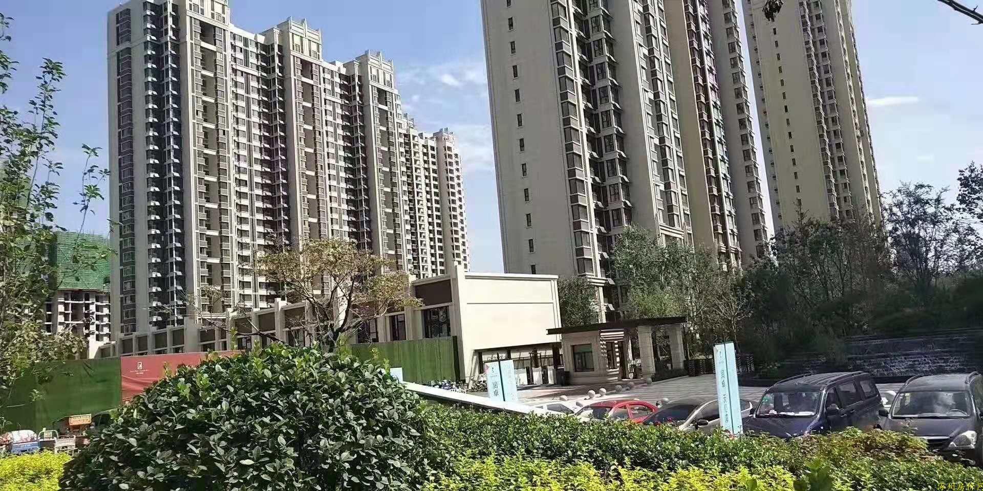 涿州天伦湾小区绿化环境楼体图片